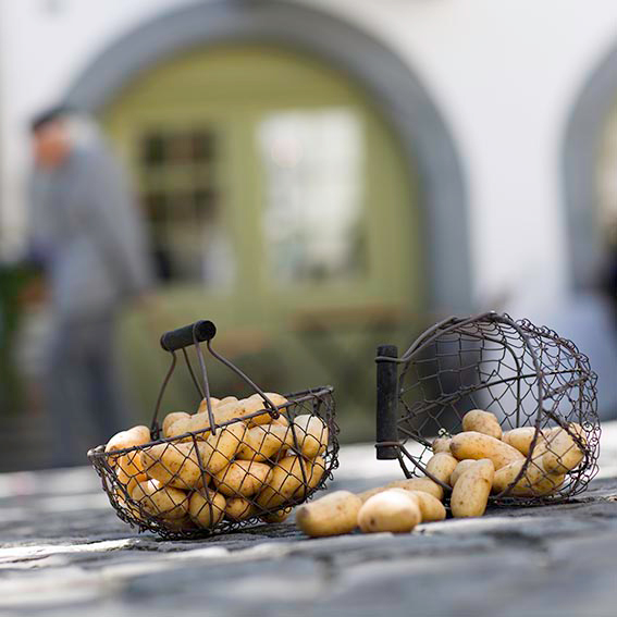 patates_delfilm